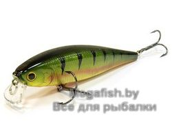Pointer-100-SR-884-Aurora-Gold-Northern-Perch