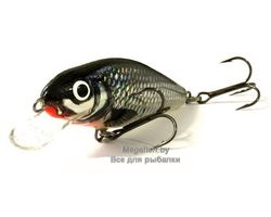 Salmo-PERCH-HGS
