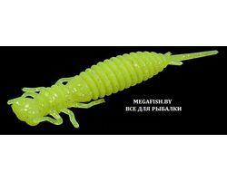 Fanatik-Larva-024
