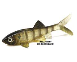 Berkley-Powerbait-HVS-Sick-Fish-clear-bream