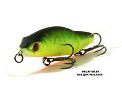 Tsuribito-Pike-Strike-88SP-028