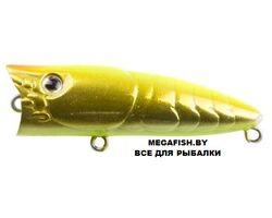Zipbaits-ZBL-Popper-Tiny-713R